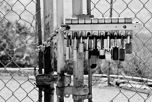 Locks on a chain link fence