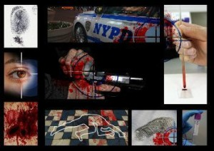 NYPD crime scene collage